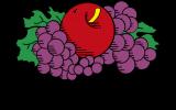 fruit-of-the-loom-hersteller-logo